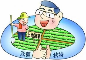 农村土地流转有哪几种模式?哪一种土地流转模式最安全可靠?